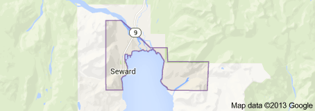 seward_google_data